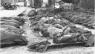 303-iojo kalno skerdynės